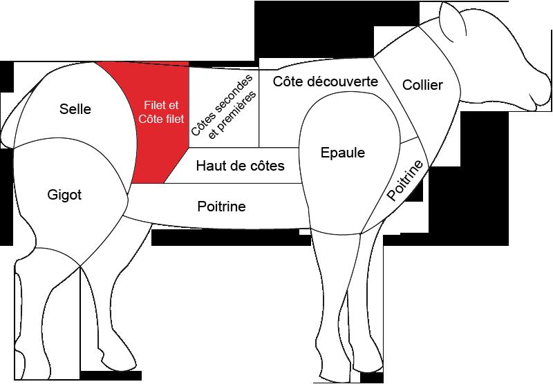 Côte filet d'agneau